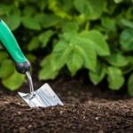 Is your garden getting doused with lead?