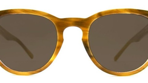 ecoholic4_largesunglasses