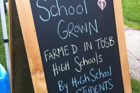 foodshare schoolgrown