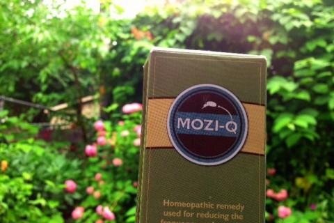 Mozi-Q